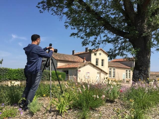 SaintGermier79 arbre de lannee 2015-04