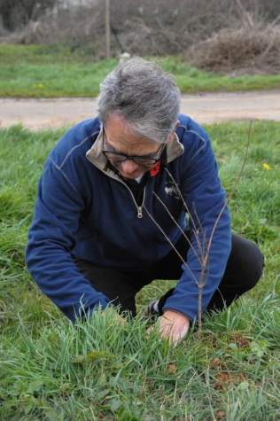 St Germier (79340)-2 mars 2016-Jean-François Lhermitte, maire du village, plante un arbuste © Louise Baheux