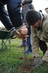 St Germier (79340)-2 mars 2016-Sébastien Trouvé du CSC des Forges aident les enfants et les ados participent à planter les haies © Louise Baheux