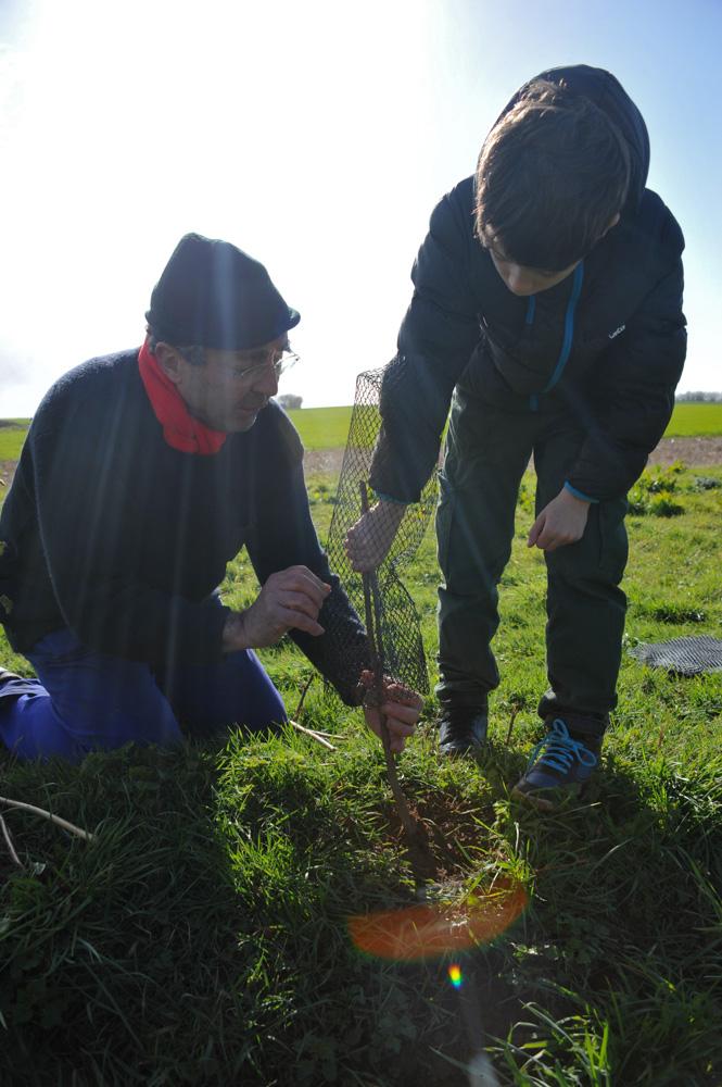 St Germier (79340)-2 mars 2016-Un enfant du village est aidé par Jean-Pierre Poteau, bénévole du CPIE de Gâtine Poitevine, pour planter la haie © Louise Baheux