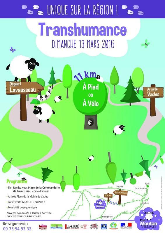 Transhumance Mouton Village