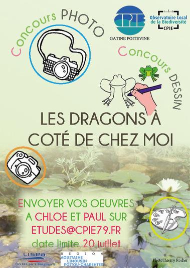 Concours Dessin Dragon