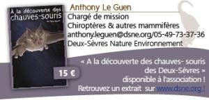 anthony-le-guen-dsne