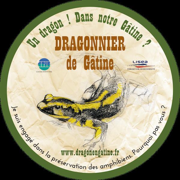www.dragonengatine.fr